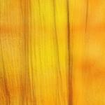 Mélange jaune et orange